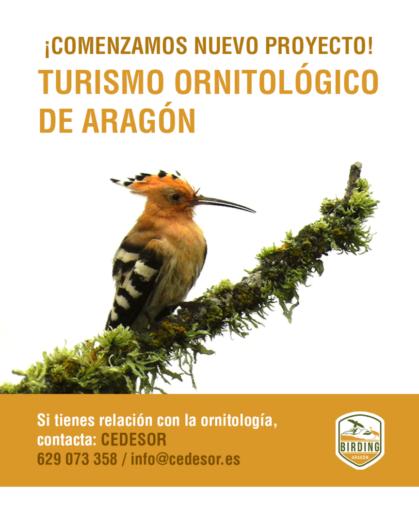 Cartel Turismo Ornitológico Aragón